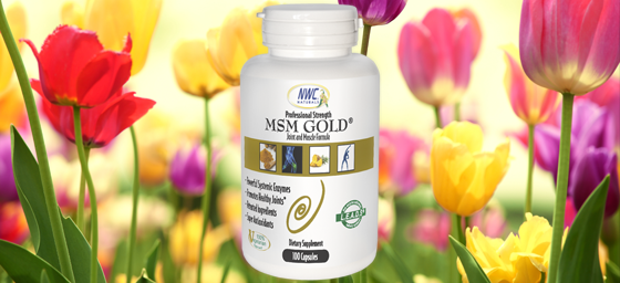 MSM Gold